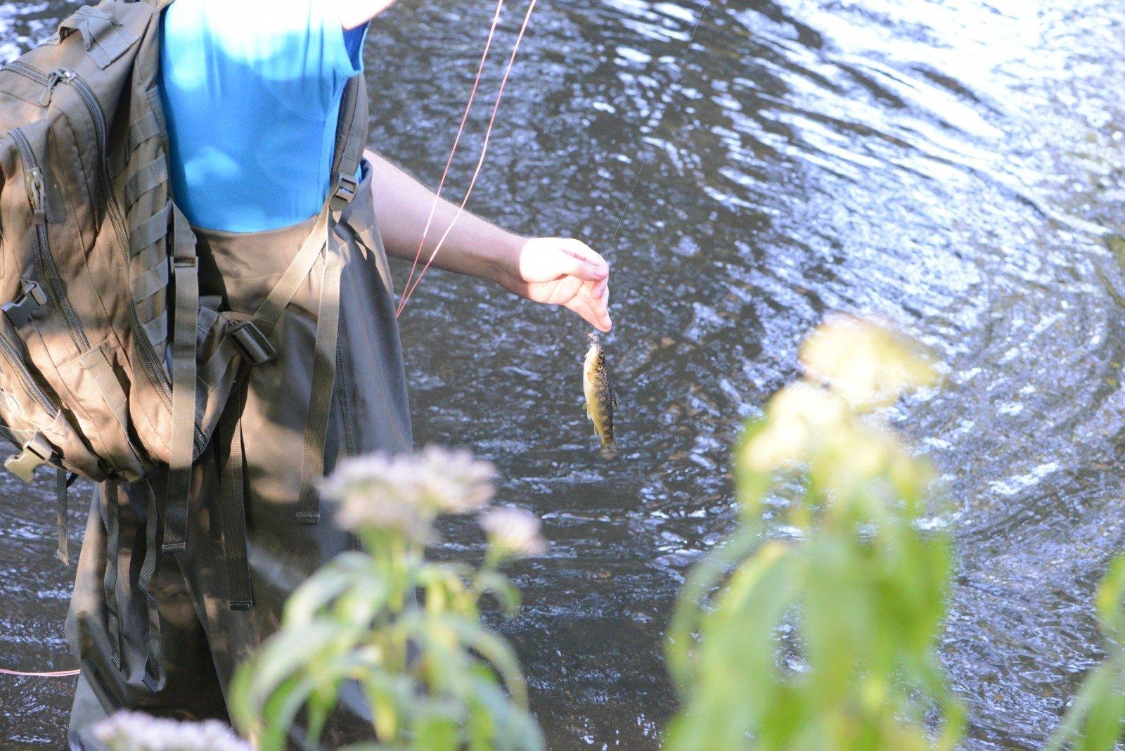 Muselinė žvejyba Vilnelėje