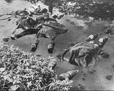 """Mūšio lauke žuvusių karių kūnų karo pradžioje niekas nelaidojo. Leidyklos """"Briedis"""" nuotr."""