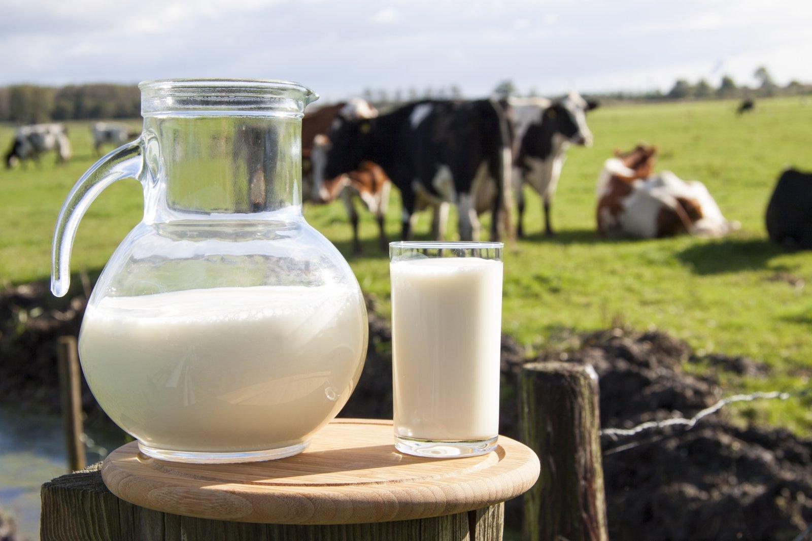 ožkos pienas naudingas širdies sveikatai)
