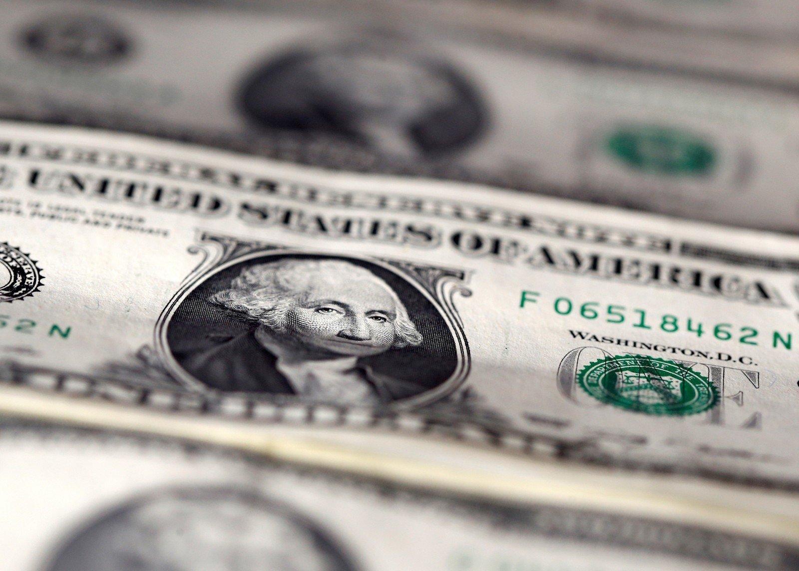 Jungtinių Amerikos Valstijų doleris (USD)