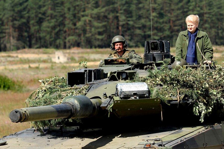 Настало время перейти к сдерживанию РФ реальной военной мощью, - Грибаускайте - Цензор.НЕТ 5042