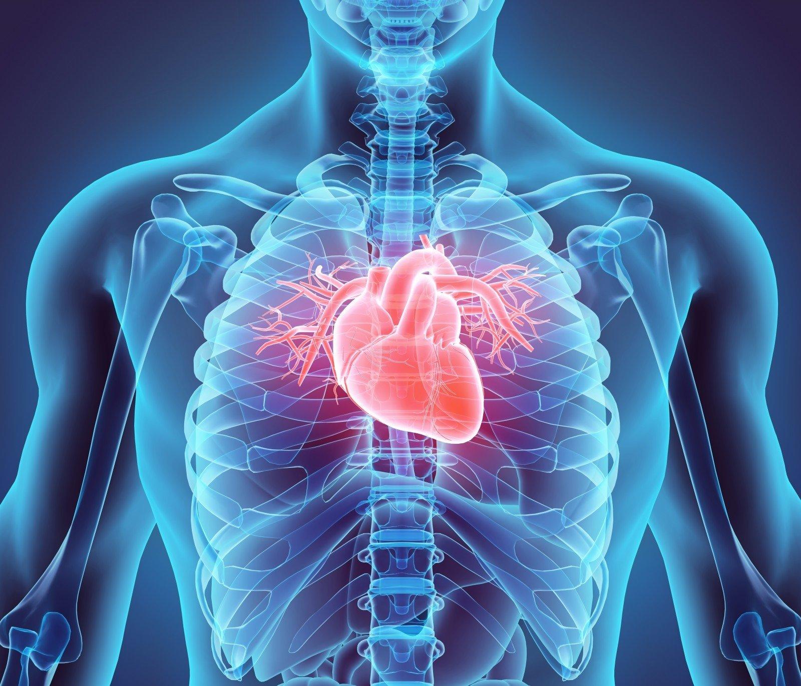širdies sveikatos pranašumas)