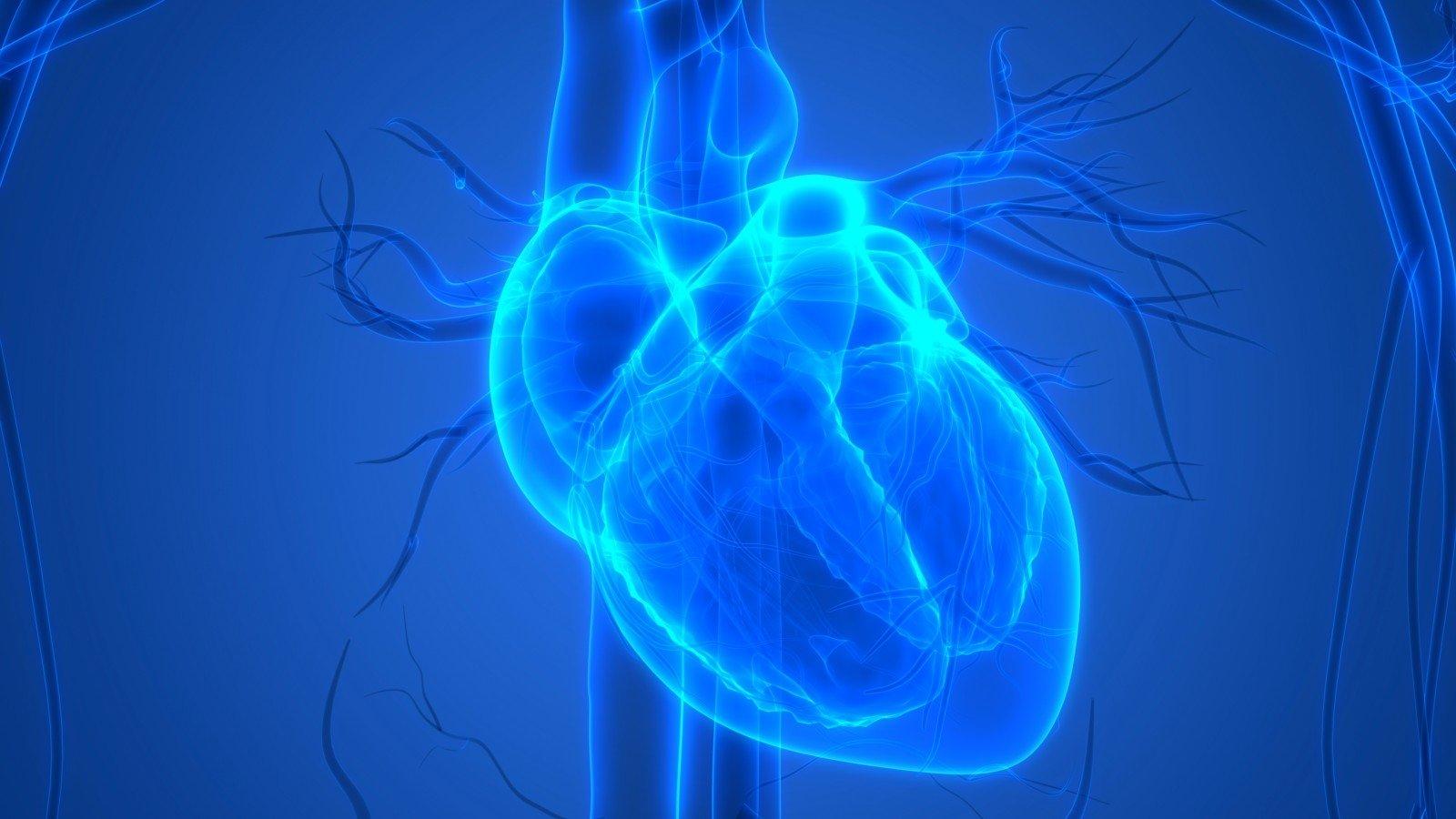 hipertenzija 3 laipsnių 4 rizikos grupė hipertenzijos polinkiai