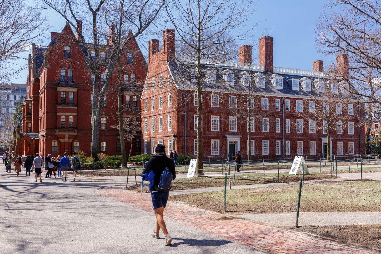 Университеты США решили судиться с администрацией Трампа