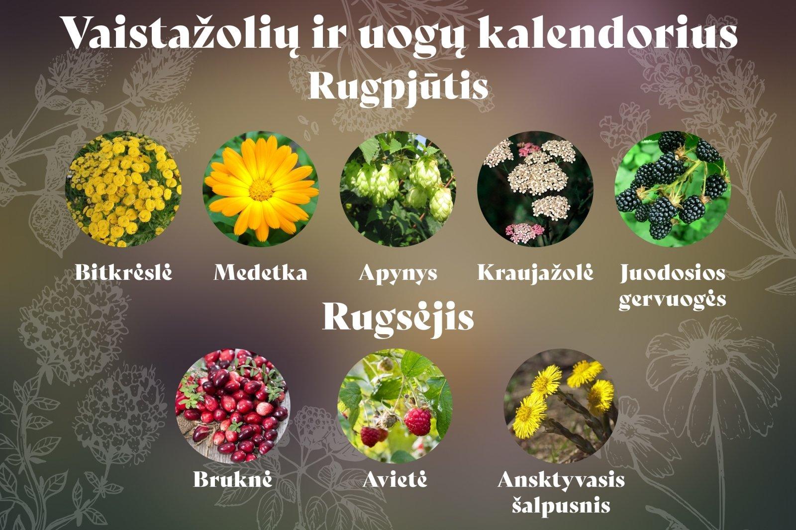 širdies sveikatos vitaminai ir vaistažolės)